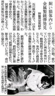 銃弾 (2).JPG